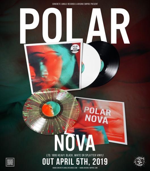 1140-Polar_Vinyl_Promo-WEB